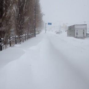 ものすごくたくさん雪が降りました。