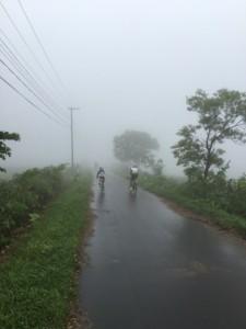 雨と霧で幻想的?です。