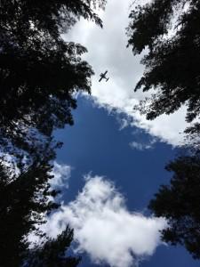 空を見上げると、飛行機がのんびり飛んでゆきました。