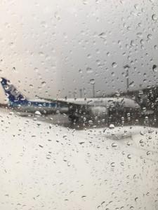 夏のNZから冬の雨が降る成田へ。
