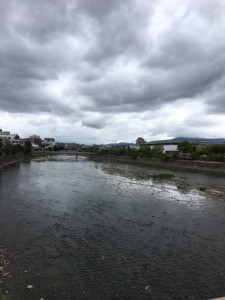鴨川を見ながらテクテク。